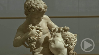 The Farnese Collection and the History of the Museum